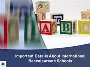 Important Details About International Baccalaureate Schools