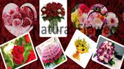 Online Flowers Delivery in Chandigarh
