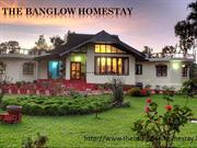 Best holiday homestay in Chikmagalur