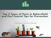 Top 3 Types of Pest and How to Control them | Bakersfield Pest Control