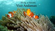 Andamans Scuba Diving and Fishing