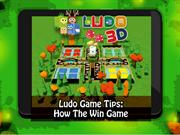 Play the multi player Ludo 3D game with your family and friend