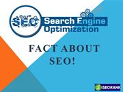 Fact About SEO!