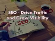 SEO - Drive Traffic and Grow Visibility