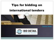 Tips for bidding on international tenders - BidDetail