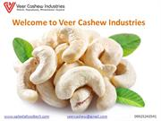 Cashew Cutting Machine Manufacturer and Supplier