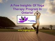 A Few Insights Of Yoga Therapy Program In Ontario!