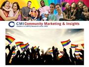 CMI's LGBT Research, Panel and Methodologies