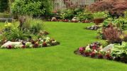 Ways to Keep Your Lawnmower Maintained For a Longer Life Span
