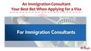An Immigration Consultant - Your Best Bet When Applying for a Visa