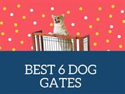 BEST 6 DOG GATES