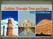India tour packages | travel agent in india