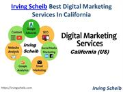Irving Scheib is Best Digital Marketing Company in California (US)