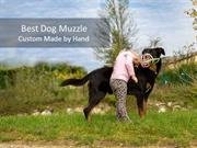Best Dog Muzzle - Custome Made by Hand