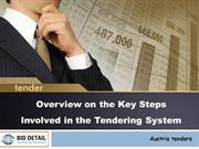 Overview on the Key Steps Involved in the Tendering System - BidDetail