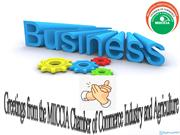 Emerging Business Information Services Provider