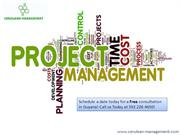 Guyana Project Management Consultant