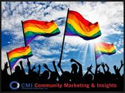 CMI's LGBT Research, Methodologies and Panel