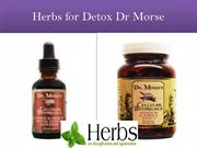 herbs for Detox Dr Morse