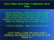 Melbourne Horse Rides | Yarra Valley Horse Rides