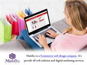 Ecommerce website Development Company – Matebiz India