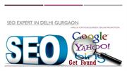 Hire SEO Expert Delhi for Your Online Promotion