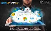 Different Phases of ERP Implementation | OptiProERP India