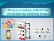 Software developing and designing