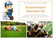 Exterminator Roanoke VA | Termite Control Roanoke VA