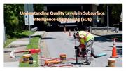 Understanding Quality Levels in Subsurface Intelligence Engineering (S