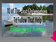 National and international organizations for conservationof wildlife