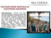 VACTION HOME RENTALS IN ELEUTHERA BAHAMAS