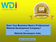 Does Your Business Need a Professional Website Development Company