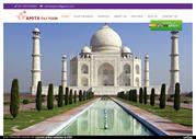 One Day Taj Mahal Tour - Amit Taj Toor