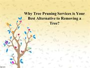 Why Tree Pruning Services is Your Best Alternative to Removing a Tree?