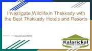 Thekkady Hotels and Resorts