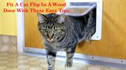Fit A Cat Flip In A Wood Door With These Easy Tips