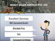 Easy Solution Of Removing Pest From Your Home And Office...