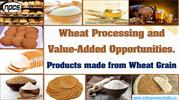 Wheat Processing and Value-Added Opportunities