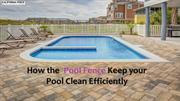 How the  Pool Fence Keep your Pool Clean Efficiently