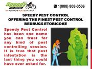 Speedy Pest Control: Offering The Finest Pest Control Services