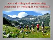 Get a thrilling and breathtaking experience by trekking in your holida