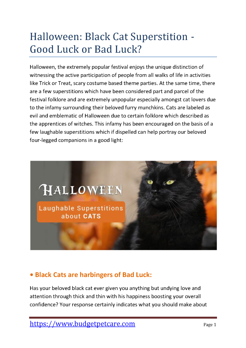 Halloween Black Cat Superstition Good Luck Or Bad Luck Authorstream