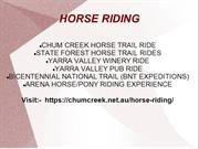 Melbourne Horse Rides | Horse Trail Rides in Melbourne
