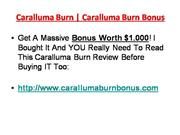 Caralluma Burn and Caralluma Burn Bonus