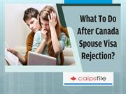 What To Do After Canada Spouse Visa Rejection