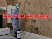 Mold Remediation Miami | Dada Mold Inspectors