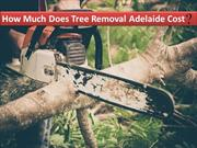 How Much Does Tree Removal Adelaide Cost?