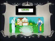 Choosing your Reliable Pest Control Service in Delhi