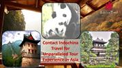 Contact Indochina Travel for Unparalleled Tour Experience in Asia